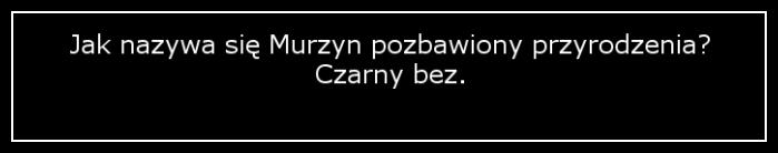 O Murzynach